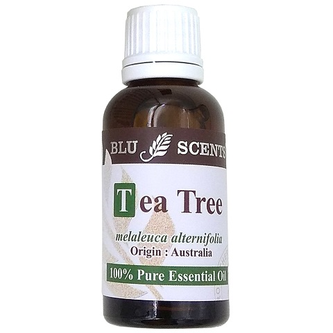 TEA TREE 30ml Pure Essential Oil