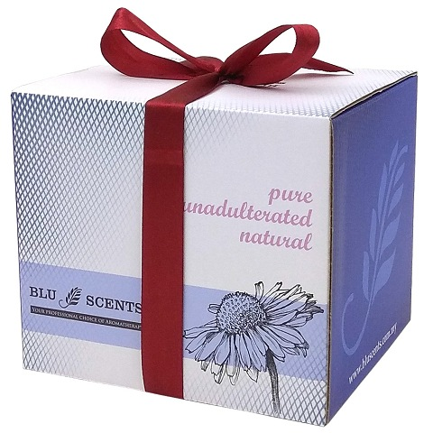 Peppermint White Tulip Burner Gift Box